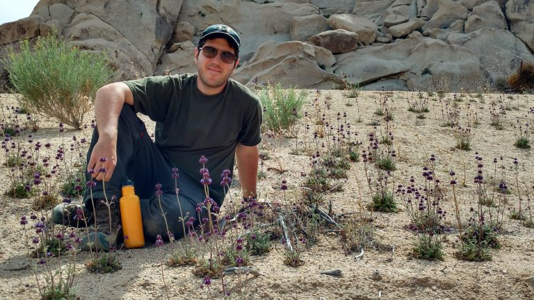 Surveying plants in the Mojave Desert  YouTube